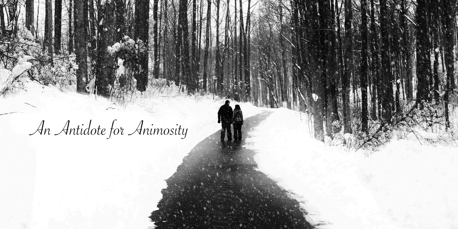 couple walking on a path in the snow