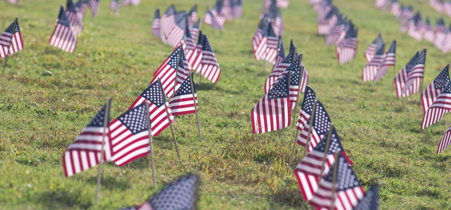 Rows of small american flags on a large grassy lawn